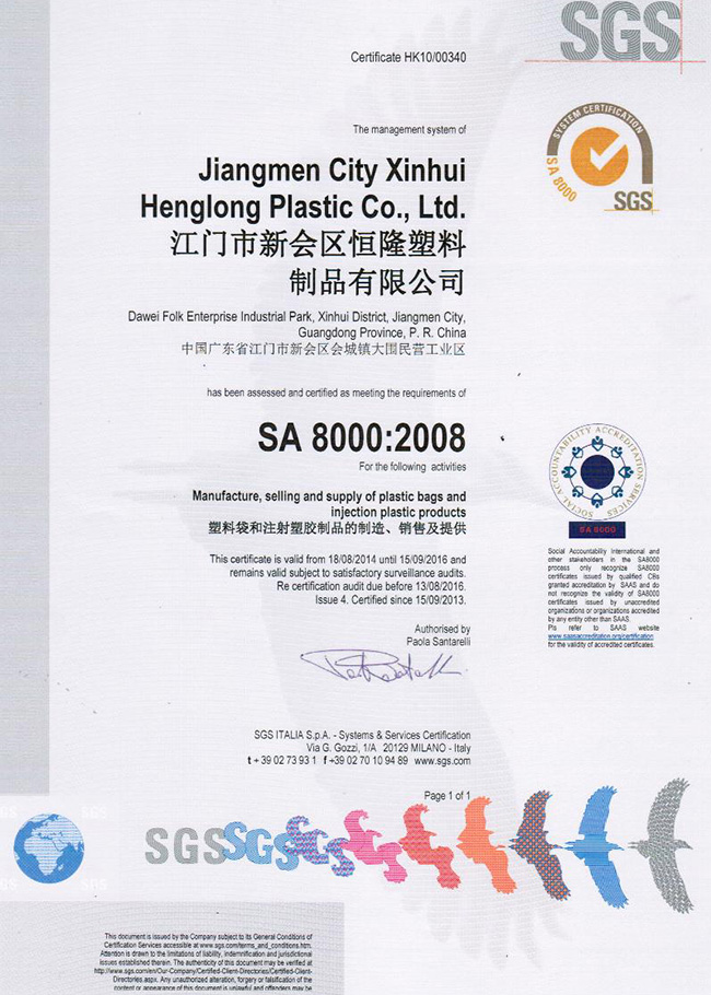 SA8000 henglong plastic Qualifications恒隆家居创新用品
